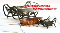 哈佛研发蟑螂仿生机器人,体长仅2.25厘米,能跑会跳应用领域广泛