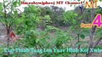 苗族故事:Ciaj Thiab Tuag Los Yuav Hlub Koj Xwb Part 4