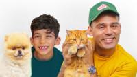超可爱,萌娃小正太和爸爸怎么照顾小猫和小狗?它们会捣乱吗?儿童亲子益智趣味游戏玩具故事