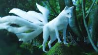 山海经中的青丘山,除了有九尾狐,还生活着什么其他异兽?