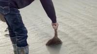 赖师傅用扫把这样做路面,就是不知道凝固后效果怎么样?