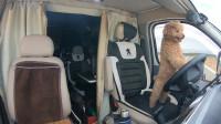 房车甘肃自驾游,阿克塞国家沙漠公园,无人机航拍还可以这样玩
