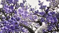 紫气东来,画的太棒啦,太美啦