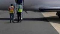 270万元 35小时!台州一商人加纳确诊新冠肺炎包机回国治疗