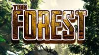 幽灵 迷失森林 P1生存冒险实况全集【TheForest】