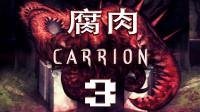 《CARRION:腐肉(红怪)》通关攻略流程 第三期 最终形态