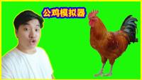 公鸡模拟器:跑起来就跟飞机一样,就是容易耗油!