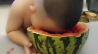 萌宝萌娃:感情深就要一口闷,吃西瓜也是一样的