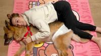 郑秀文夫妇24小时陪伴将离世爱犬 请治疗师打昂贵止痛针