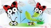 黄色的瓢虫是七星瓢虫吗?昆虫世界儿童英语