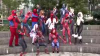 蜘蛛侠:人类对抗毒液史诗角色扮演