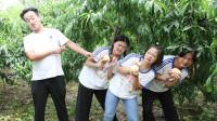 短剧:摘桃2:欢欢和伙伴们一起摘桃子,却被老板当成了偷桃贼!
