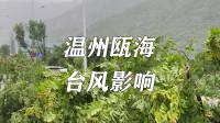 台风黑格比对温州瓯海的影响