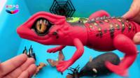 趣玩户外 儿童学习认识各种昆虫恐龙小动物