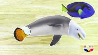 海洋动物拼图游戏 海底总动员