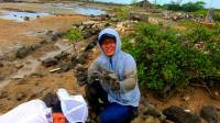 这个洞挖出的2个螃蟹,让渔夫吃惊了,颠覆了挖蟹狂魔的认知