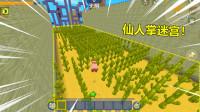 迷你世界:小猪酷跑!变猪后的小耿好倒霉,大型仙人掌迷宫,猪皮都快没了