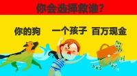 脑力测试:狗、孩子和金钱,落入水中的他们,你会选择救谁呢?