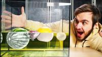 将水果放进漂白剂中,浸泡一晚会发生什么?网友:变异了