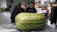 土豪花4万买了200多斤的大西瓜,切开一看后,顿时傻眼了!