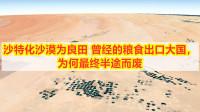 沙特化沙漠为良田:曾经的粮食出口大国, 为何最终半途而废