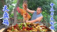 """家养13斤大公鸡,快成精了,做个""""大盘鸡""""解解馋,总算吃爽了"""