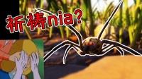 头一回见到这么恐怖的大蜘蛛!头都给我吓飞《禁闭求生》02