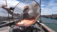 柳州农庄钓鱼收钱吗