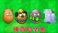 植物大战僵尸:不同版本中的坚果,有什么区别?