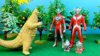 奥特曼玩具:怪兽雷德王霸占果园,迪迦奥特曼出手教训
