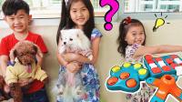 狗狗零食挑战 亲子互动游戏和狗狗玩耍