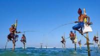 世界上最奇特的钓鱼方式,踩着高跷却不用鱼饵,大鱼会自动上钩!