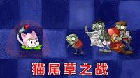 植物大战僵尸:猫尾草VS全部僵尸,逆袭时刻!