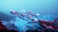 海底迎来世界末日,鱼类被迫变异,只能和铁皮罐头共用一个身体