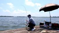 短时间一天钓鲤鱼技巧,选粗细结合窝料,饵料频率状态是关键