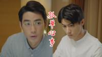 """平凡的荣耀:爱你是孤单的心事,""""姜葱CP""""超好磕!"""