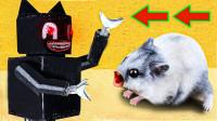 小仓鼠大战机器人僵尸,它能逃出生天吗?网友:鼠生不易!