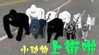 小动物上街啦,一黑一白太可爱,它们要去哪里呢?