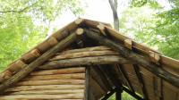 独自林中建造 简易小木屋