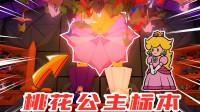 纸片人马力欧:进入城堡,发现桃花公主被制作成折纸标本