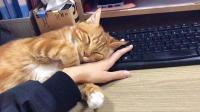 好生气啊,根本无法工作!
