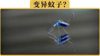 高速跑120KM/H,为什么车里的蚊子也不会被甩在后挡玻璃上?