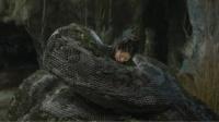 村民遇巨蟒,几乎被吃光,但人心比蛇更恐怖【蛇王二创大赛】