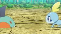 精灵宝可梦 旅途 41.皮卡丘 配音大作战!一半 沼跃鱼。