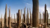 塔克拉玛干深处的千棺之谜4:350具棺木在荒漠中被发现