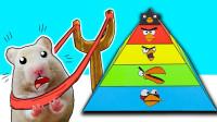 小仓鼠勇闯金字塔迷宫,过五关斩六将,它能顺利到达终点吗?