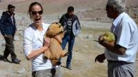 好吃的土拨鼠全身胖嘟嘟,给它吃的就让抱抱,游客都被它萌翻了!