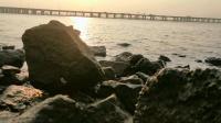 海邊公園 前海灣大橋11