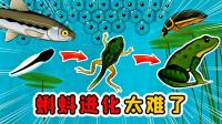 进化模拟器:小蝌蚪变成青蛙的过程,原来充满了危险