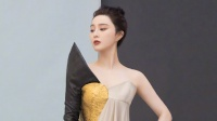 范冰冰注销美丽宫文化交流公司 注册资本为300万